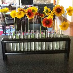 Test tube rack as a flower vase