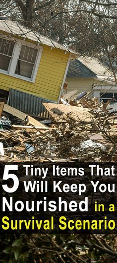 """5 Tiny Items That Will Keep You Nourished in a Survival Scenario. This video is a little different from all the other """"survival food"""" videos out there. In it,The Green Preppertalks about five tiny items that are often overlooked, yet pack a big punch in terms of taste, energy, and nutrition. #Survivalscenario #Urbansurvivalsite #Survivalfood"""