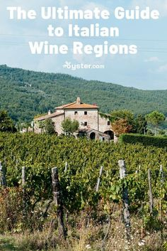 For wine lovers, few places in the world compare to #Italy, a nation that boasts over 350 official vino varieties. Whether you prefer a crisp, dry white or a deep, full-bodied red, you'll find your tipple of choice in this European country, where almost every region seems to have strong wine-making credentials. From the rolling hills in the north to the rich, volcanic land in the south, Italy is packed with amazing wine-producing areas. Follow our guide to the top Italian #wine regions. Piedmont Wine, Piedmont Italy, Italy Country, Wine Country, Chianti Wine, Hotel Victoria, Brunello Di Montalcino, Wine Guide, Wine Sale