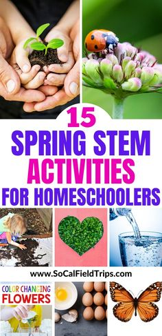 15 Spring STEM Projects For Kids Stuck at home? Try one of these 15 Spring STEM Activities For Kids that will keep little scientists engaged, learning and well-prepared for the century! Stem Projects For Kids, Stem For Kids, Spring Projects, Spring Crafts, Crafts For Kids, Garden Projects, Spring Activities, Learning Activities, Preschool Activities