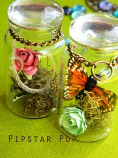Glass Bottle Necklace Mini Terrarium in Potion Vial by PipStarPop