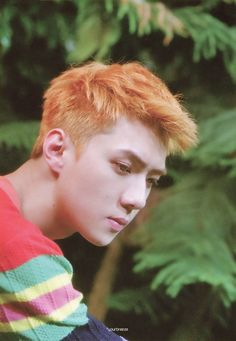 I can say that I love Sehun BUT I don't like this hair color generally