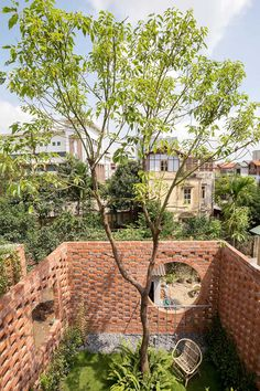VH House / ODDO architects Rooftop Lounge, Rooftop Garden, Indoor Garden, Hanoi, Vietnam, Gardening, Architect Design, Traditional House, Outdoor Spaces