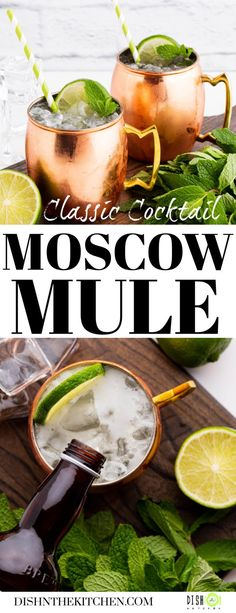 Salute the summer cocktail season with a classic: The Moscow Mule. This easy three ingredient mule recipe will have your thirst quenched in no time!