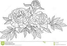 Tatouage réaliste de fleur de pivoine du dessin trois