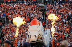 Denver Broncos football!!