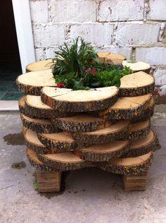 Ağaç saksı