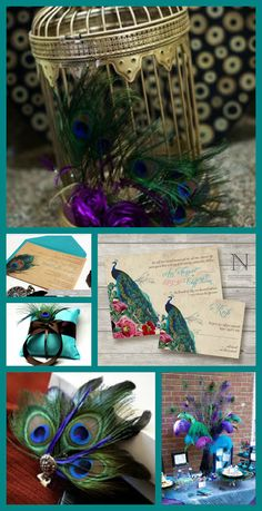 Peacock Wedding Invitations  Rustic Vintage Invites by nellybean, $3.75