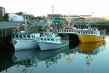 American lobster - Fishing boats in Yarmouth, Nova Scotia. In the late 1990s and early 21st century, lobster fishing was the cause of troubles between Acadians and Mi'kmaq First Nations in the Canadian Maritimes. Burnt Church, a reserve between Miramichi and the Acadian town of Neguac, was the hub of these troubles. Efforts have been made to bring Acadians and natives closer together, and the tension has slowly abated.