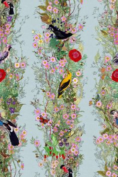 The Fruit Looters wallpaper. As part of their 25th year in textiles and surface design, Timorous Beasties launch a new design trinity in debt to the great master, William Morris. ~ETS #birds #wallpaper