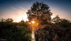 Sunset at Mechelse Heide - Limburg - Belgium -II