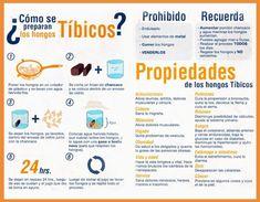 Infografía de Preparación de Hongos Tibetanos