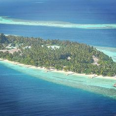 【mahi_guide】さんのInstagramをピンしています。 《#MALDIVES #Gopro #sealife #underwaterphotography #resort  #sea #Maldivesislands #ゴープロ #カメラ #撮影 #ビーチ #ダイビング  #ocean #海外 #旅行 #旅 #camera #photography  #diving #水中写真 #モルディブ #シュノーケリング  #Yolo  #相互フォロー  #snorkeling #scubadi