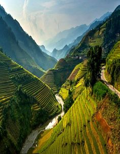 Rice terraces in Mù Cang Chải, Vietnam