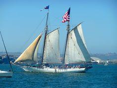 Bill of Rights sailing