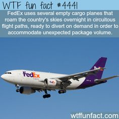 FedEx cargo airplanes -   WTF fun facts