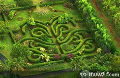 Maze in Na 'Aina Kai Botanical Gardens