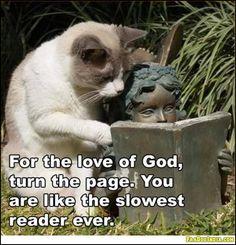 An unusual reading partner