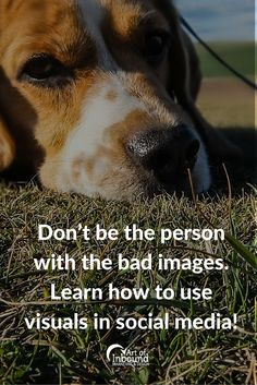 Don't be the person with the bad images. Learn how to use visuals in social media.