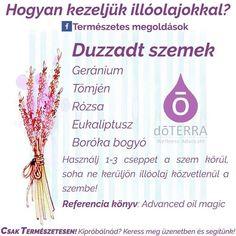 Doterra, Essential Oils, Essential Oil Uses, Doterra Essential Oils, Essential Oil Blends