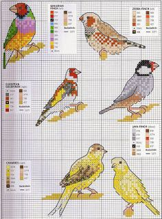 Finches and canaries - free cross stitch patterns Butterfly Cross Stitch, Mini Cross Stitch, Cross Stitch Needles, Beaded Cross Stitch, Cross Stitch Animals, Cross Stitch Embroidery, Free Cross Stitch Charts, Counted Cross Stitch Patterns, Cross Stitch Designs