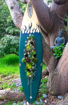 """Surf board """"Hen & Chicks"""" planter!!!  Even better then the shadow box version on BH"""