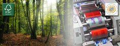 """Siamo un'azienda certificata FSC (Forest Stewardship Council), sistema di certificazione internazionale che garantisce che la materia prima usata per realizzare un prodotto in legno o carta proviene da foreste dove sono rispettati dei rigorosi standard ambientali, sociali ed economici. Siamo anche una """"IMPRESA ETICA"""", testimoniando attivamente il valore del rispetto delle leggi e la necessità di contribuire in modo responsabile allo sviluppo economico, sociale ed ambientale della comunità in…"""