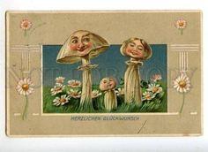 Antique vintage mushroom family anthropomorphic mushroom postcard
