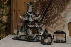 """De CO Kerstboom..opgebonden van cocosdelen """"Bij Aafke"""" www.bloemworkshops.nl"""