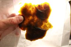Grand Daddy Kush Indica Shatter http://buyweedonline.ca/product/grand-daddy-purple-indica-shatter/