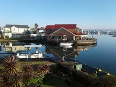 23 Jamaican Palms, Marina Martinique, Jeffreys Bay - Lofts for Rent in Jeffreys Bay, Eastern Cape, South Africa Lofts For Rent, Tree Line, Beautiful Sunset, Palms, Palm Trees, South Africa, The Neighbourhood, Surfing, Scene