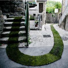 Französischer grüner Teppich