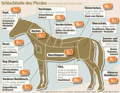 horse meat chart in german; die schlachterkarte ist etwas detaill… horse meat chart in german; the butcher card is a bit more detailed than in other countries. Cinnamon Cream Cheese Frosting, Cinnamon Cream Cheeses, Meat Recipes, Cooking Recipes, Rinder Steak, Horse Meat, Black Sesame Ice Cream, Fox Cookies, Bear Cakes
