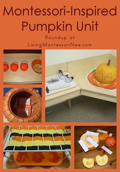 Montessori-Inspired Pumpkin Unit - wide range of activities for younger grades (maybe pre-K through 1st).