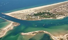 Ilha de Tavira - Algarve Beautiful birds and amazing fiddler crabs in the bay. The bluest sea and sky