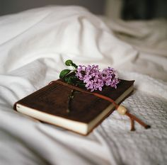 while you're sittin' all alone in your room on your bed   by Danielle Hughson   Flickr - Photo Sharing!