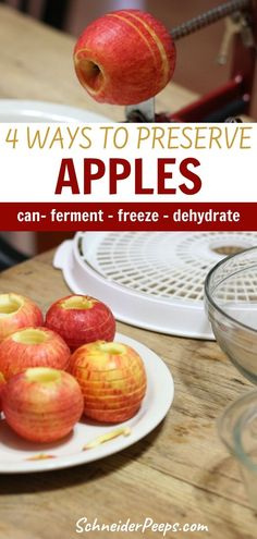 Who doesn't love crispy apple rings or apple pie filling? You can fill your pantry with these and more when you preserve apples when they're in season. This simple guide will show you how to can apples - from apple jelly to apple pie filling - also how to freeze, dehydrate and ferment apples and fill your pantry with snacks and treats to enjoy the whole year. #PreservingFood #FromScratch #Homesteading #SimpleLiving Dehydrated Apples, Canned Apples, Preserving Apples, Preserving Food, Apple Jelly, Apple Pie, Healthy Foods To Eat, Healthy Eating, Healthy Recipes