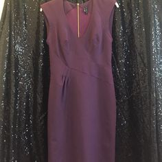 Sexy Theory Dress Plum work dress with gold exposed zipper, and mesh back. Sexy, and sophisticated! The zipper is missing a few teeth at the bottom, but it still zips up and down without issue. Theory Dresses