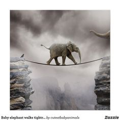 Baby elephant walks tightrope across big gorge. poster #elephant #elephants #baby #babyanimals #nurserydecor #nurserywalldecor #nurseryideas #cuteanimals #art #painting This is an affiliate link and I will be compensated if you make a purchase after clicking on my link.