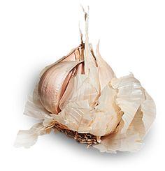 Tibetan garlic cure - effektiv udrensningskur den tibetanske hvidløgskur