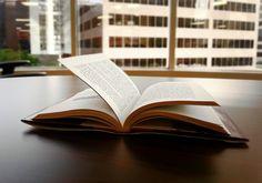 """""""Eine Investition in Wissen, bringt noch immer die besten Zinsen"""" Einer meiner Ziele für das neue Jahr ist es, jede Woche ein neues Buch zu lesen, das mich entweder persönlich oder geschäftlich weiterbringt. Auf meiner Suche, was ich denn nun lesen sollte, fiel mir auf, das es gar nicht so einfach ist"""