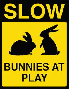 Easter bunny road signs-  But to be real, I'd have to change it to deer or squirrels...