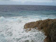 ,,,a typical coastal line of Niue.