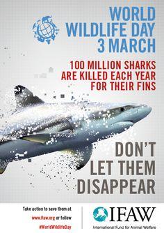 World Wildlife Day!