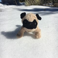 A day of firsts! Mr. Pug visits the Grand Canyon AND plays in the snow for the first time!  ——————————————  #arizona #snow #mrpug #travel #grandcanyon #pugs #cute #nationalpark #roadtrip #winter