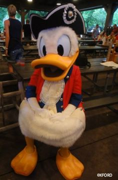 Patriotic Donald Duck...isn't he the cutest thing?