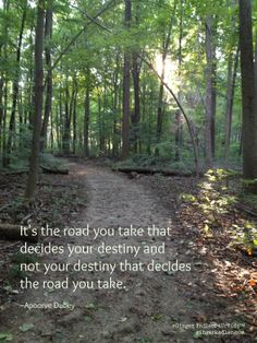 Which road will you choose?