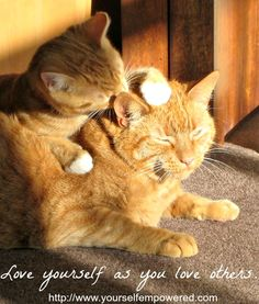 Love yourself as you love others! #BeyondTheMagicPill