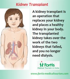 Saving Lives Through #Kidney Transplants. www.fortis-medicaltourism.com/clinical-expertise/transplants #kidneytransplants #Kidneydisease #medicaltourism