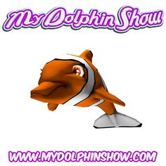 HERE IS A FANETASTK IDEA FOR DALPHIN SHOWS AND TRANEING!!!!